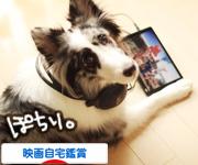 にほんブログ村 映画ブログ 映画DVD・ビデオ鑑賞へ