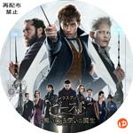 ファンタスティック・ビーストと黒い魔法使いの誕生 DVDラベル