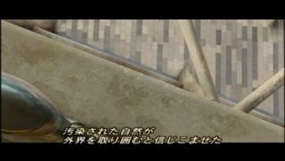 jimaku_cat